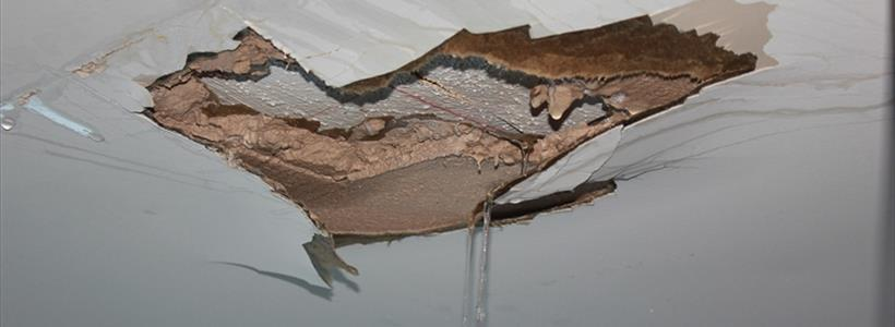 Troubled Waters - Water Insurance Claims Under Attack