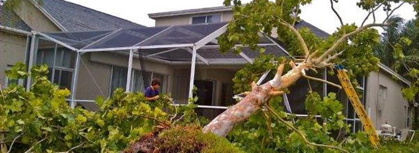 Surviving Hurricane Sally Insurance Claims
