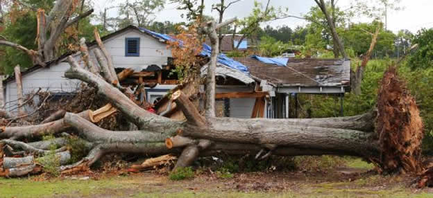 Hurricane Michael Insurance Claim Adjuster